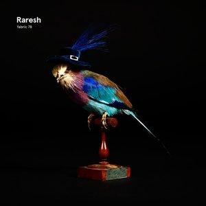 VARIOUS/RARESH - Fabric 78/Raresh