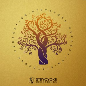 VARIOUS - Steyoyoke Perception Vol 6