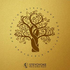 VARIOUS - Steyoyoke Perception Vol 4