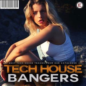 VARIOUS - Tech House Bangers Vol 6