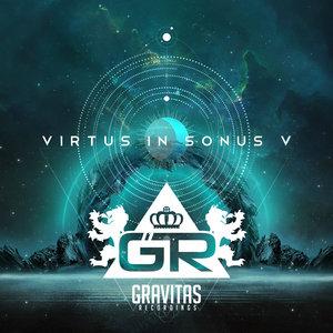 VARIOUS - Virtus In Sonus V