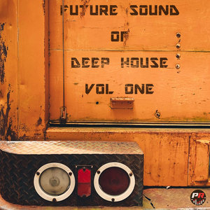 VARIOUS - Future Sound Of Deep House Vol 1