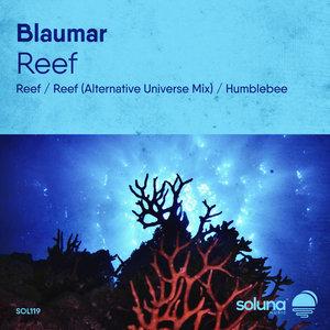BLAUMAR - Reef