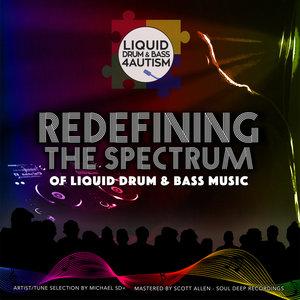 VARIOUS - Liquid Drum & Bass 4 Autism presents/Redefining The Spectrum