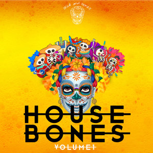 VARIOUS - House Bones Vol 1