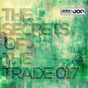 VARIOUS - The Secrets Of The Trade 017