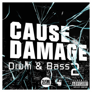 VARIOUS - Cause Damage Drum & Bass 2 (Explicit)