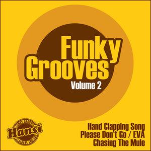 HANSI - Funky Grooves Vol 2