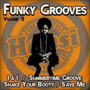 HANSI - Funky Grooves Vol 9