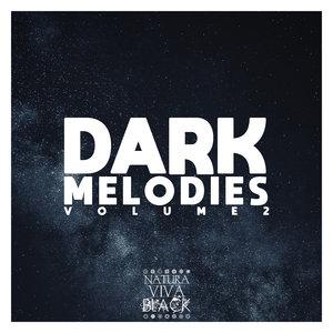 VARIOUS - Dark Melodies Vol 2