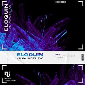 ELOQUIN/PURPLE VELVET CURTAINS - Alkaline