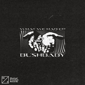BUSHBABY - What We Had EP