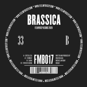 BRASSICA - Crystal Sea