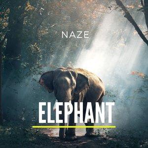 NAZE - Elephant