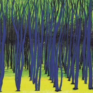 TIM ENGELHARDT - Rooted EP