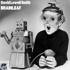 DAVID LOWELL SMITH - Brainleaf