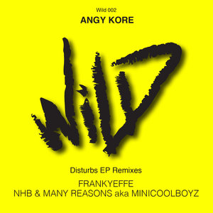 ANGY KORE - Disturbs Remixes