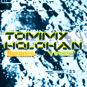 TOMMY HOLOHAN - Dance Trax Vol 29