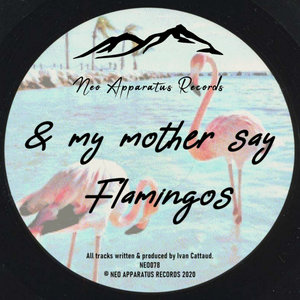 & MY MOTHER SAY - Flamingos