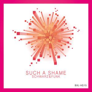 SCHWARZ & FUNK - Such A Shame