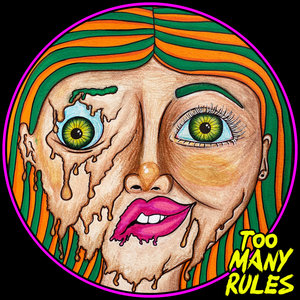 VARIOUS - 2 Years Of Too Many Rules