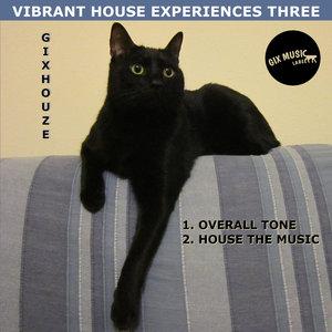 GIXHOUZE - Vibrant House Experiences Three