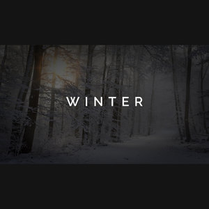 DREAMUNIONBEATS - Winter