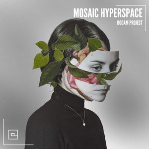 BODAM PROJECT - Mosaic Hyperspace