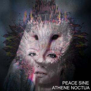 PEACE SINE - Athene Noctua EP