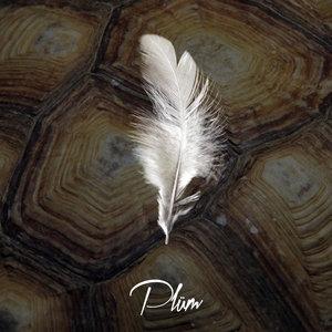 PLUM - Theme For My Life