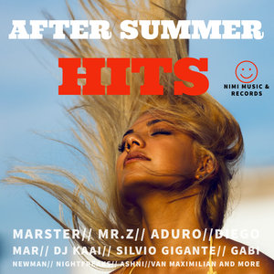 VARIOUS - After Summer Hits