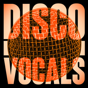 VARIOUS - Disco Vocals/Soulful Dancefloor Cuts Feat 23 Of The Best Grooves
