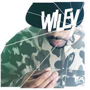 WILEY - Wot Do U Call It?