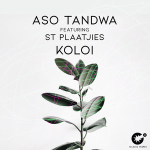 ASO TANDWA feat ST PLAATJIES - Koloi
