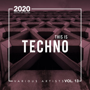 VARIOUS - This Is Techno Vol 13