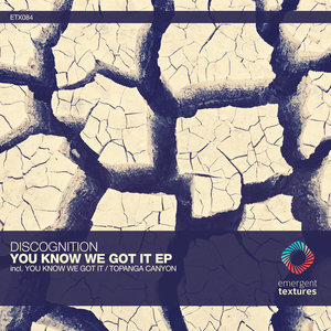 DISCOGNITION - You Know We Got It