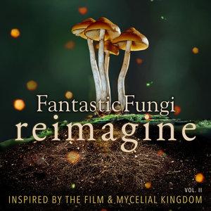 VARIOUS - Fantastic Fungi: Reimagine Vol II (Inspired By The Film & Mycelial Kingdom)