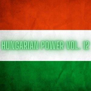 VARIOUS - Hungarian Power Vol 12