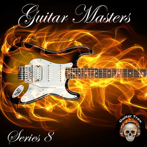 VARIOUS - Guitar Masters Series 8