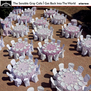 THE SENSIBLE GRAY CELLS - Get Back Into The World