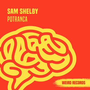 SAM SHELBY - Potranca