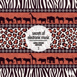 VARIOUS - Secrets Of Electronic Music/Afro House Edition Vol 3