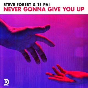 STEVE FOREST/TE PAI - Never Gonna Give You Up