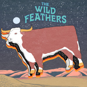 THE WILD FEATHERS - Fire