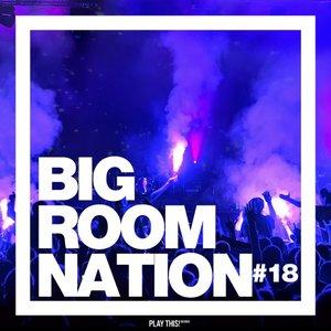 VARIOUS - Big Room Nation Vol 18