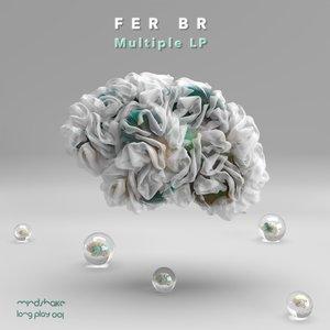 FER BR - Multiple
