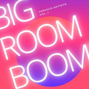 VARIOUS - Big Room Boom Vol 1