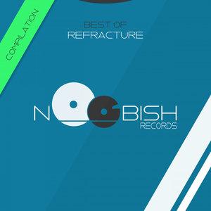 VARIOUS/NOOBISH RECORDS - Best Of Refracture
