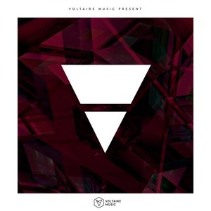 SHAWNECY/LUIXAR KL & NOMAD/ALEXANDER AUREL/MONETIC - Voltaire Music presents V: Issue 29
