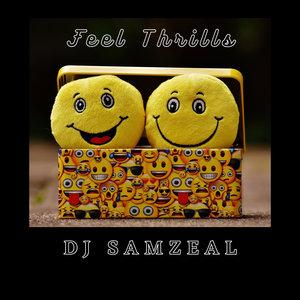 DJ SAMZEAL - Feel Thrills